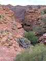 Kings Canyon Australia 2004 - panoramio (1).jpg