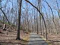 Kings Mountain National Military Park - South Carolina (8557775573) (2).jpg