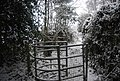 Kissing gate by the Tunbridge Wells Circular Path - geograph.org.uk - 1670597.jpg