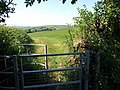 Kissing gate near Diptford - geograph.org.uk - 1376220.jpg
