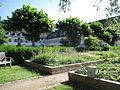 Kloster Saarn Kräutergarten-1.JPG