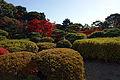 Kobe Suma Rikyu Park08n4592.jpg
