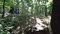 Kobylica (Opawskie Mountains), 2020.09.11 06.jpg