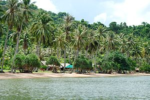 Kep Province - A beach on Koh Thonsay