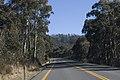 Kosciuszko National Park NSW 2627, Australia - panoramio (155).jpg