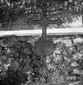 Križ na pokopališču v Šmihelu 1957.jpg