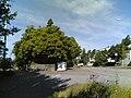 Kurkimäentie - panoramio (1).jpg