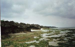 Kuroshima (Okinawa) - Image: Kuroshima Nakamoto Kaigan