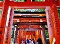 Kyoto Schrein Fushimi-Inari-taisha Torii 06.jpg