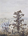 Léon Bonvin - Thistles and Weeds - Walters 371519.jpg