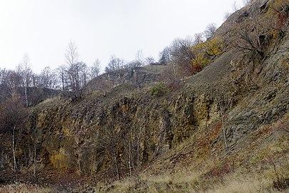LSG HM 00026 Hessisch Oldendorfer Wesertal Nord - bei Pötzen - Steinbruch am Hohenacken (42).jpg