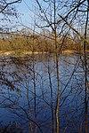 LSG H 00070 Calenberger Leinetal - Teich an der Calenburg (2).jpg
