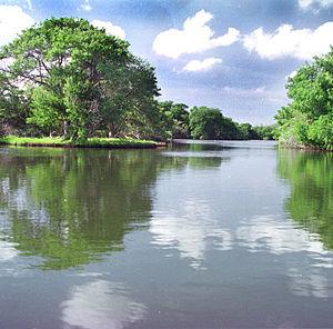Laguna de la Restinga - Image: La Restinga