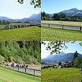 Lafferer-Trabrennbahn St. Johann in Tirol.jpg