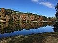 Lake Joe, Sea Pines Forest Preserve, Hilton Head.jpg