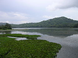 Lake in Gamboa, Panama 02.jpg