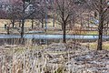 Lampi Penttilänpellolla - panoramio (1).jpg