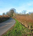 Lane between The Hough and Higher Wych - geograph.org.uk - 330044.jpg