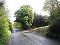 Lane near Garty Lough - geograph.org.uk - 1301314.jpg