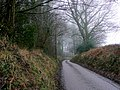 Lane to Hillerton - geograph.org.uk - 1723093.jpg