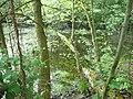 Langenfeld Nähe Haus Graven 0007.jpg