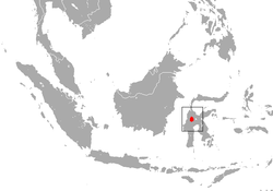 Lariang Tarsier area.png