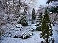 Las zimą - panoramio (1).jpg
