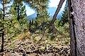 Lassen Volcanic National Park (0f8b663a-5f2c-437f-ba3d-f02976b91845).jpg