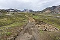 Laugavegur hiking trail, Iceland 01.jpg