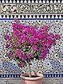 Le jardin oriental (Marzahn) (9641075619).jpg