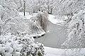 Lebenswertes chemnitz winter stadtpark schnee kleiner teich 1.jpg