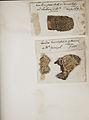 Lichenes Helvetici pars altera 003.jpg