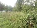 Lieninski District, Mogilev, Belarus - panoramio (394).jpg