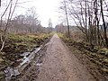Linear Park at Laymoor - March 2013 - panoramio.jpg