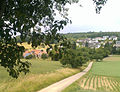 Lingental-von-Norden.jpg