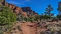Llama Trail (28246923159).jpg
