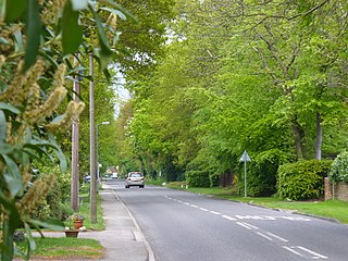 Winkfield village and civil parish in the Bracknell Forest unitary authority of Berkshire, England
