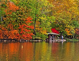 Central Park [Park] 300px-Look_out_point_on_the_lake_at_Central_Park,_NYC