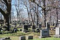 Looking NE through Sec 49 - Woodland Cemetery.jpg