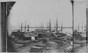 Lumber Yard, City Point, Va - NARA - 525202