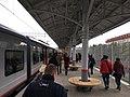 MCC Izmaylovo station.jpg