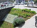 Madeira em Abril de 2011 IMG 1557 (5661350509).jpg
