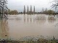Main-hochwasser-2011--13-ffm-of-002.jpg