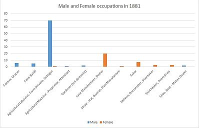 Male and Female Occupation in 1881