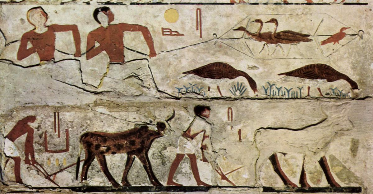 Wall Painting In Predynastic Egypt Is