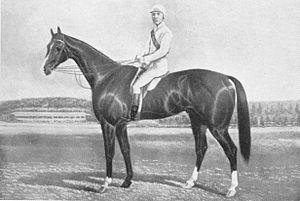Malua (horse) - Image: Malua