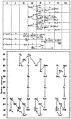 Marie Curie - L'isotopie et les éléments isotopes, 1924 (page 51 crop).jpg