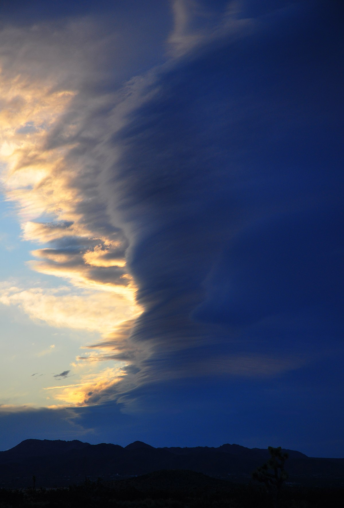 Atmospheric convection - Wikipedia