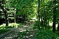 Max-Aschmann Park - panoramio (6).jpg