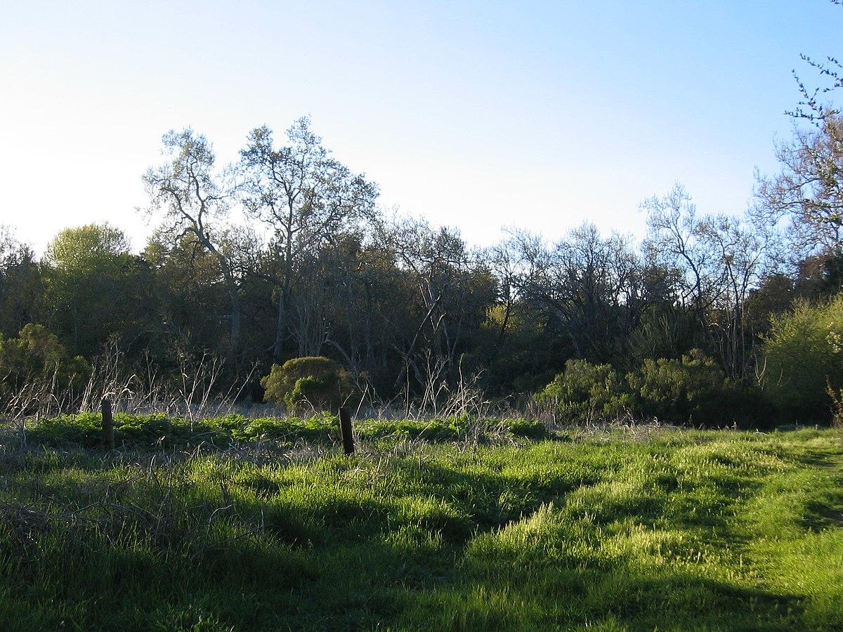 Mcclellan Ranch Park Wikipedia